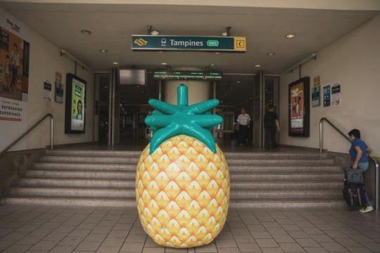Про новій заправці в Сінгапурі повідомили з допомогою гігантського ананаса d4f0ec6325153dd5b3f0eae9b1f03e08